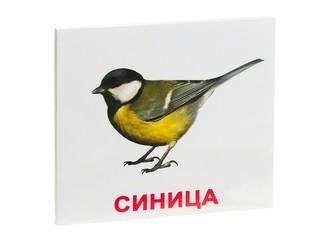 """Набор обучающих карточек """"Птицы"""""""
