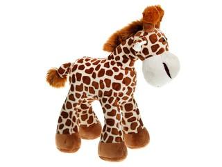 Жираф стоящий. Вид 3