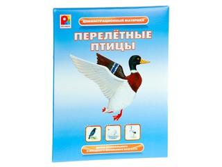 """Демонстрационный материал """"Перелетные птицы"""". Вид 1"""