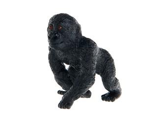 Детеныш гориллы. Вид 1