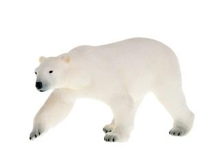 Полярный медведь. Вид 1