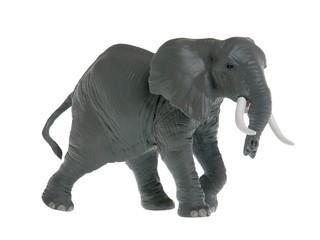 Африканский слон. Вид 1