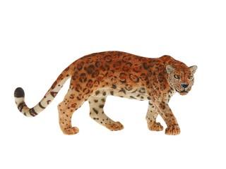Ягуар. Вид 1