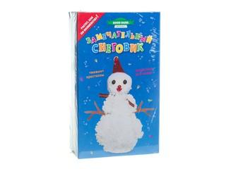 Замечательный снеговик. Вид 1