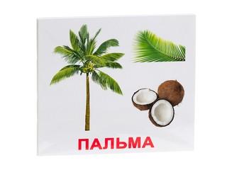 """Набор обучающих карточек """"Деревья"""""""
