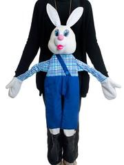 Ростовая кукла заяц. Вид 1
