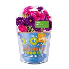 Набор для выращивания Happy Plant Астра звездная