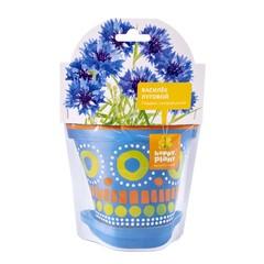 Набор для выращивания Happy Plant Василек луговой