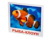"""Набор обучающих карточек """"Обитатели воды"""". Вид 1"""