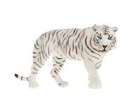 Белый тигр. Вид 1