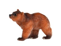 Бурый медведь. Вид 1