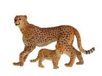 Гепард с детенышом