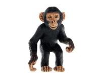Детеныш шимпанзе. Вид 1