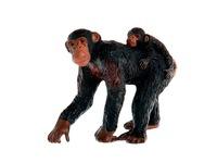 Шимпанзе с детенышем. Вид 1