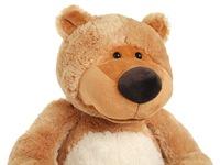 Медведь потапыч малый