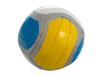 Мяч волейбольный. Вид 1