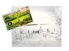 Набор для живописи масляными красками Утренняя прогулка. Вид 2