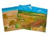 Природные зоны Степи. Вид 2