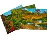 Природные зоны Тропики. Вид 2