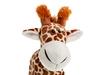 Жираф стоящий. Вид 2