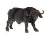 Африканский буйвол. Вид 1
