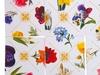 Гадания на цветах Английский сад. Вид 3
