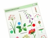 Мир природы растения 2. Вид 4