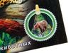 Волшебный фонарик царство животных. Вид 4